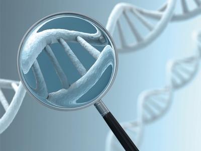 Davranışlar genetik miras yoluyla mı oluşuyor?