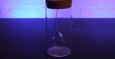 Statik Elektrikle Neler Yapılabilir?
